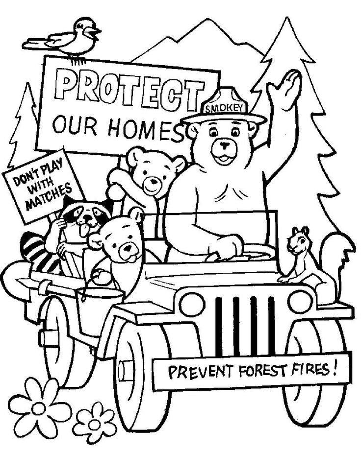"Smokey wants us to ""Protect our Homes"""